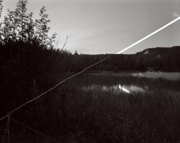 David_Shannon-Lier-13