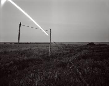 David_Shannon-Lier-5